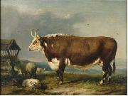 Hereford Bull with Sheep by a Haystack